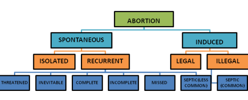 TYPES OF ABORTION