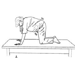 antenatal exercises - 4